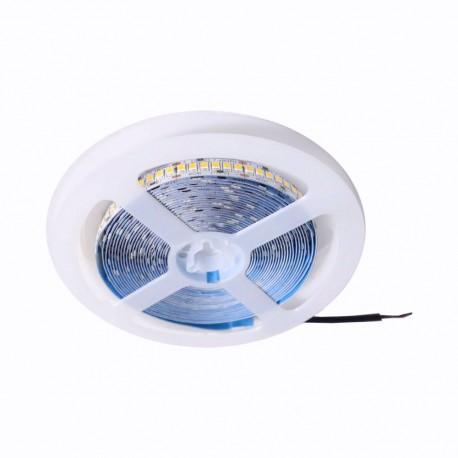 TIRA LED 2835 120 LEDS X METRO 24V