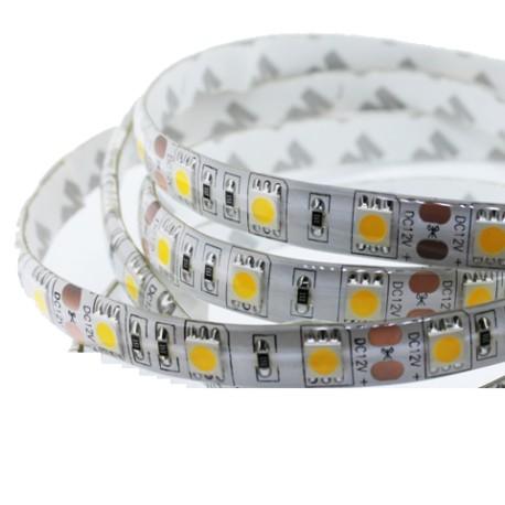 TIRA LED 5050 60 LEDS X METRO 12V